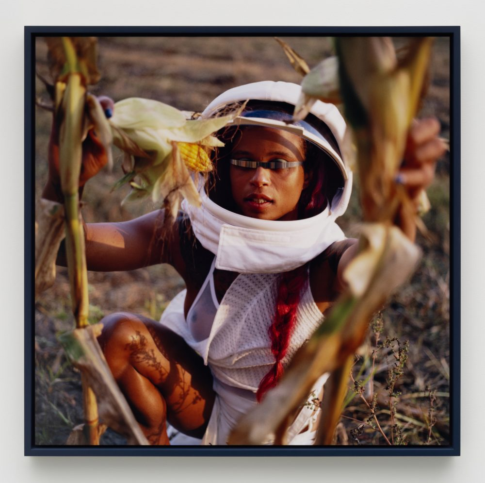 Photograph of a person crouching wearing futuristic eyewear and a helmet like hat with plants in the foreground.