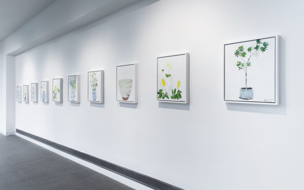 Multiple canvas works on white gallery walls