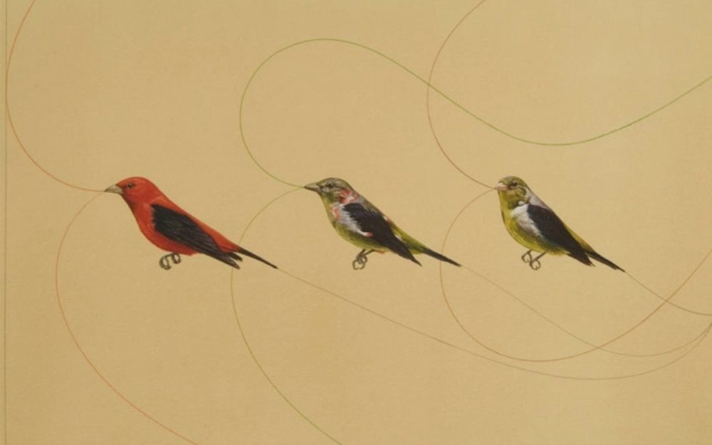 Three small birds against a beige background