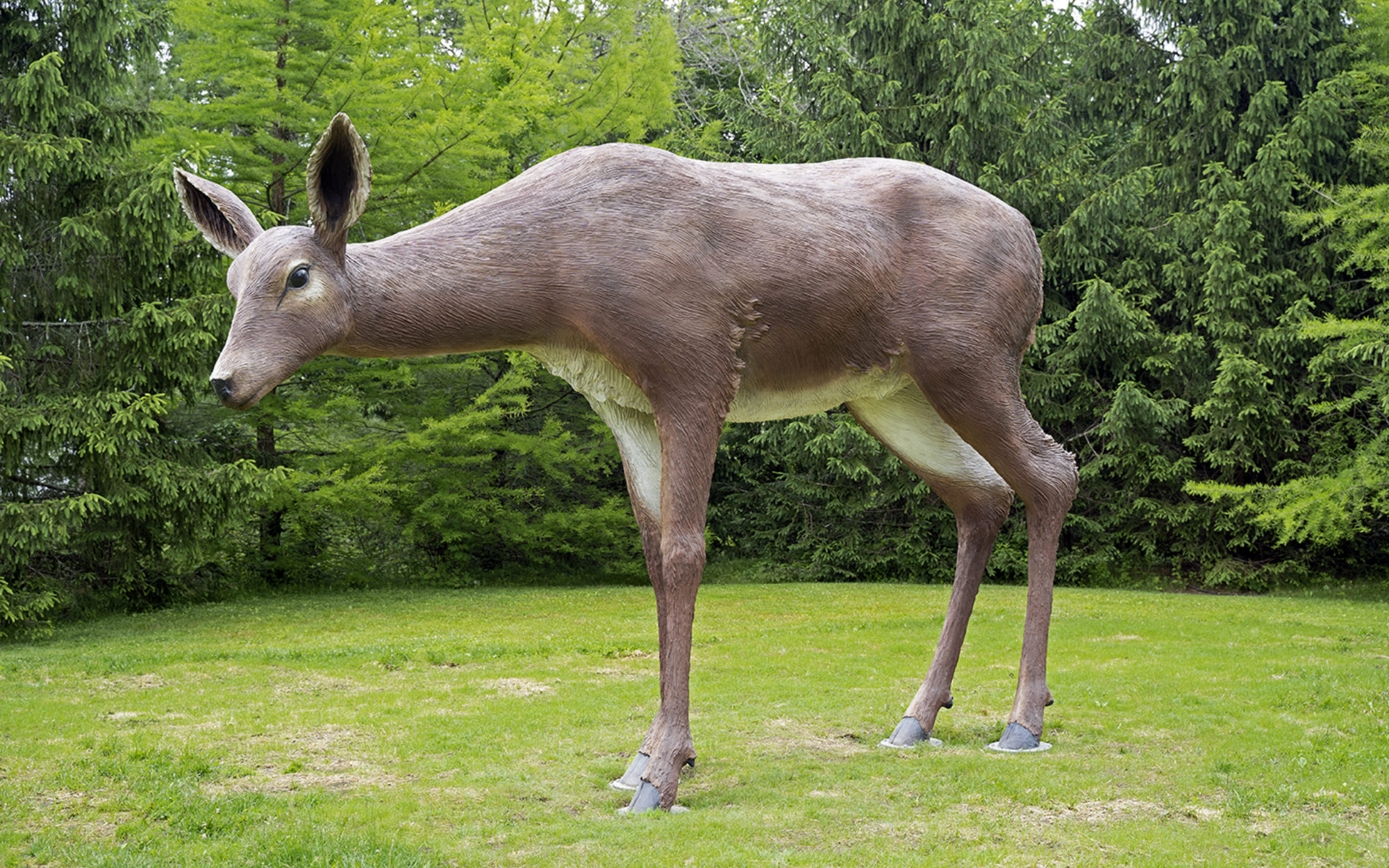 Large sculpture of a white-tailed deer