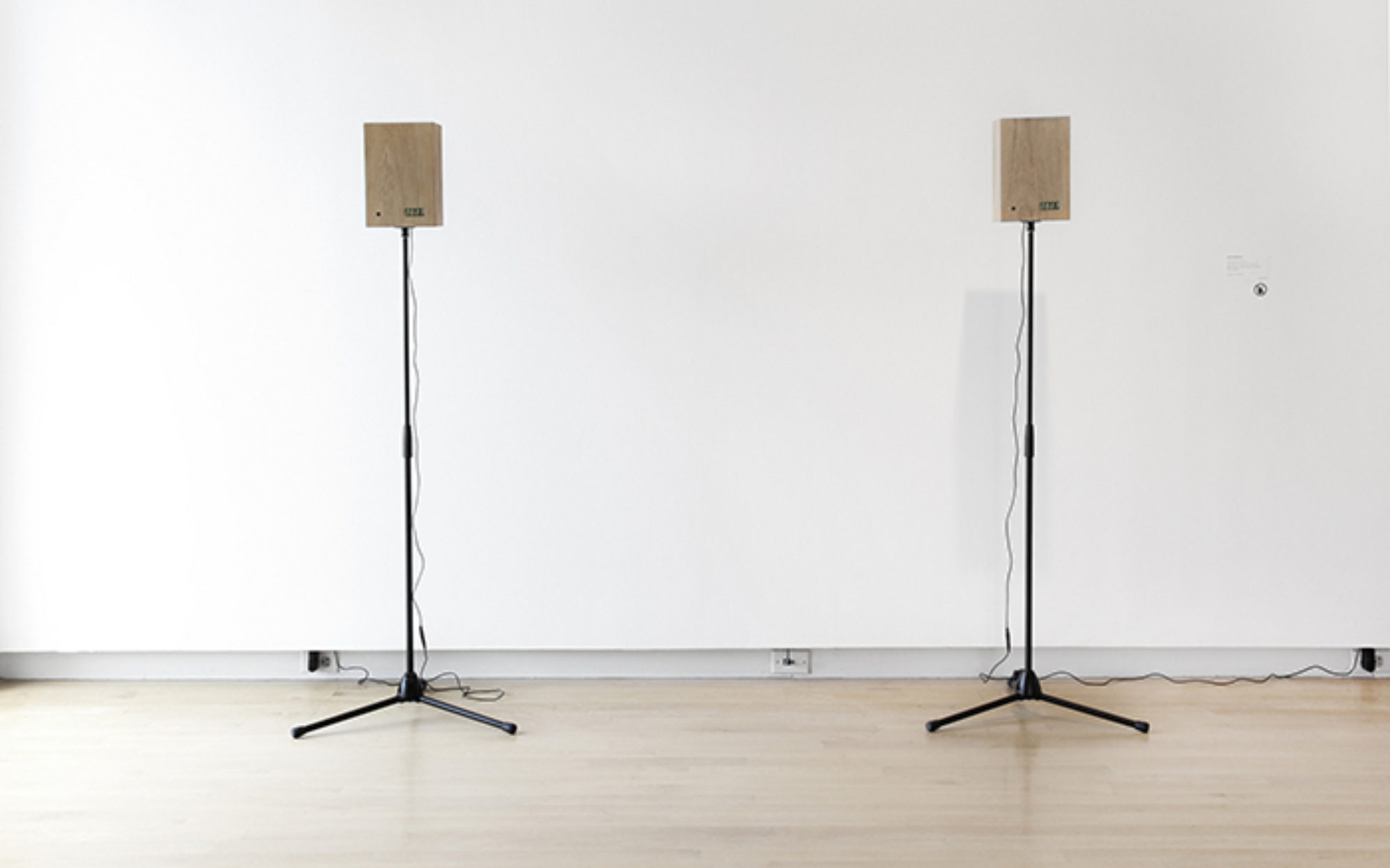 Two tall speakers stand in a gallery