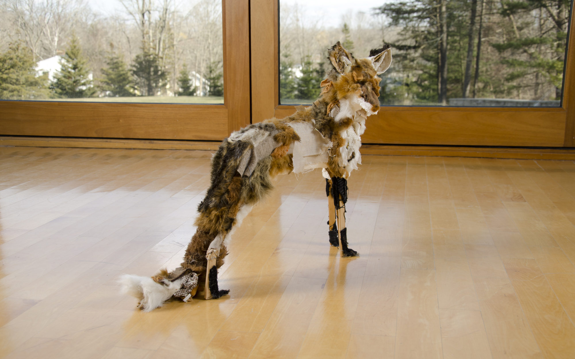 Small fox-like figure sits on the gallery floor