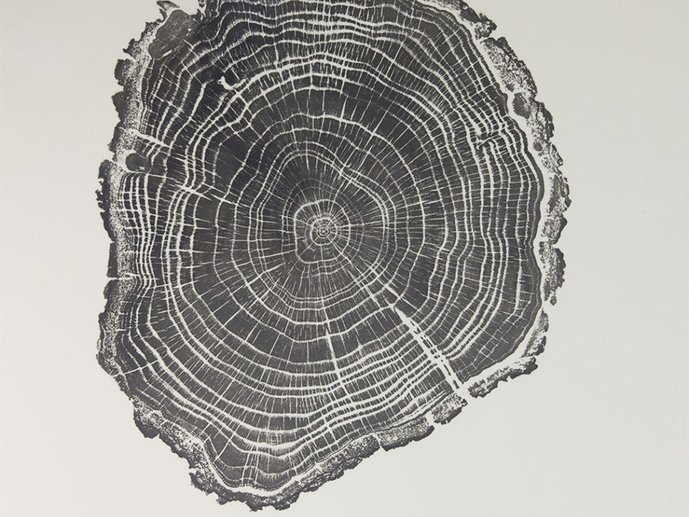 Black ink print of the rings of a tree.