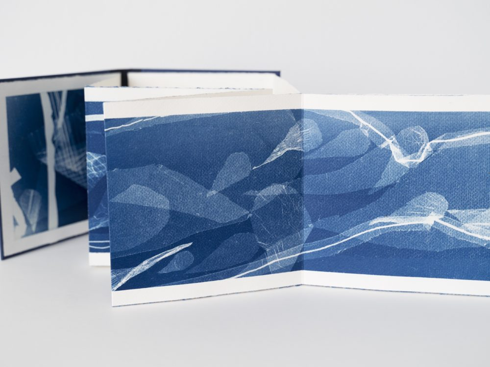 The accordion folded pages of an artists' book with blue and white cyanotype images.