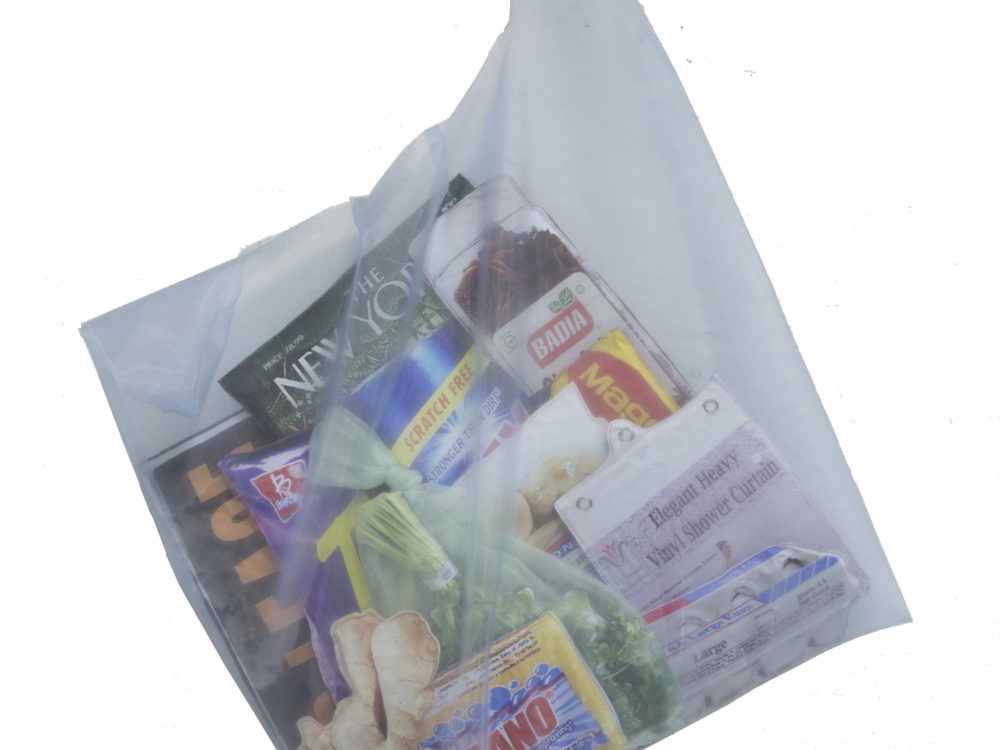 Blue-gray transparent bag filled with items such as The New Yorker magazine, a shower curtain, fresh herbs, ginger root, sponges, eggs, and more.