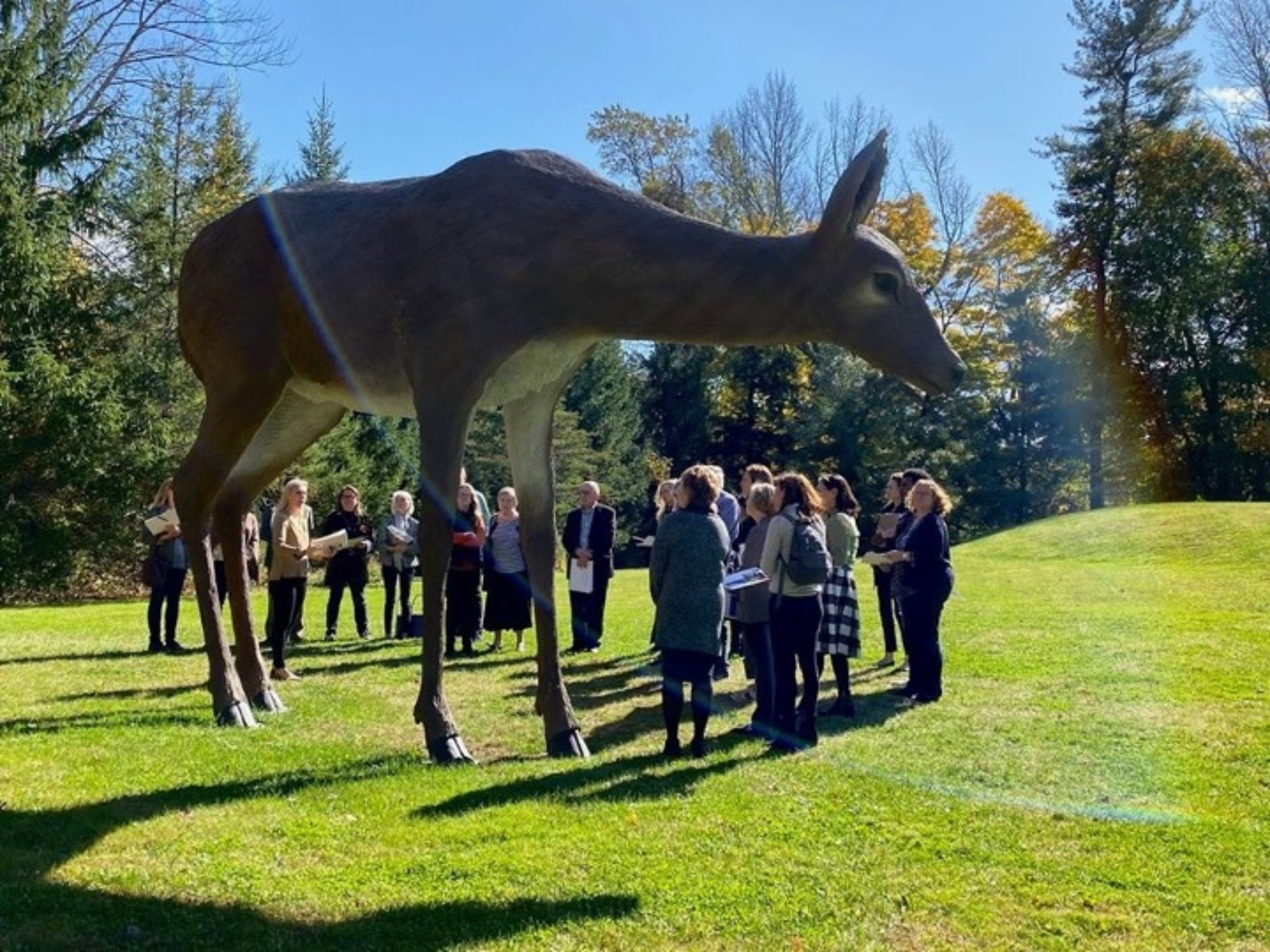 Group of people standing around a large scale sculpture of a white tailed deer in the Sculpture Garden.