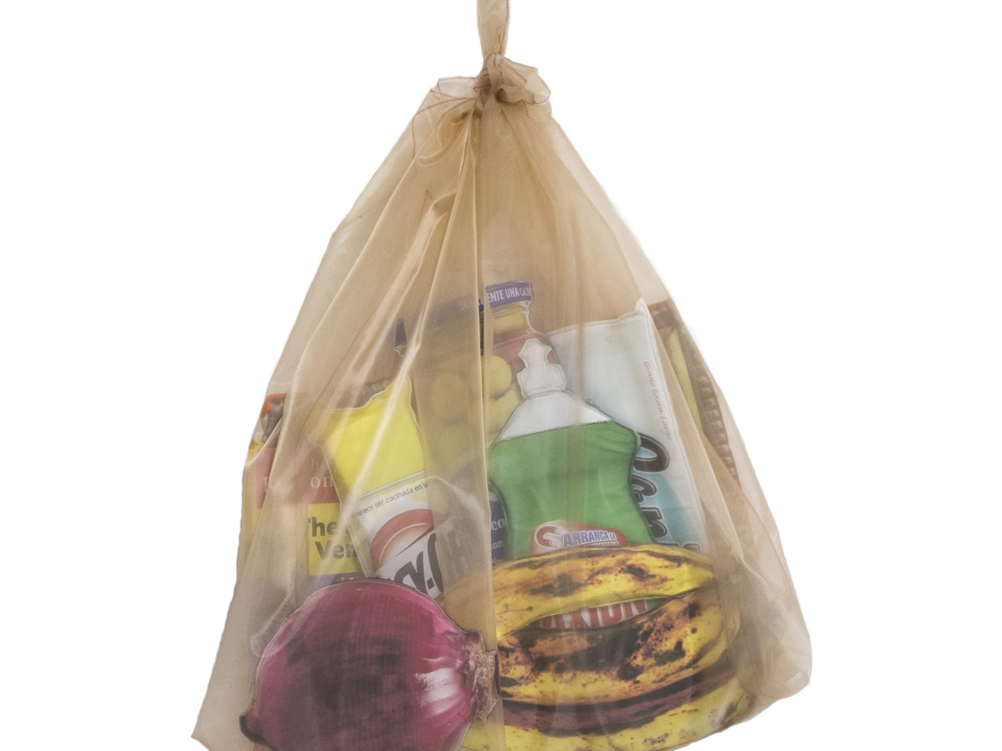 Digital print of a opaque tan grocery bag filled with goods such as dish soap, bananas, and a red onion.